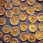 suszarnia_komorowa_konwekcyjna_SKKw-9E_13_suszone-pomarańcze-plastry